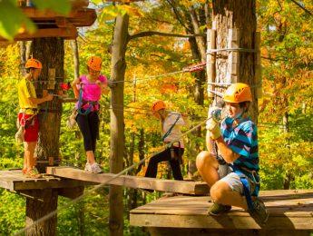 Camp Fortune Aerial Park